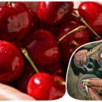 7 Природных средств для вашего расстроенного желудка
